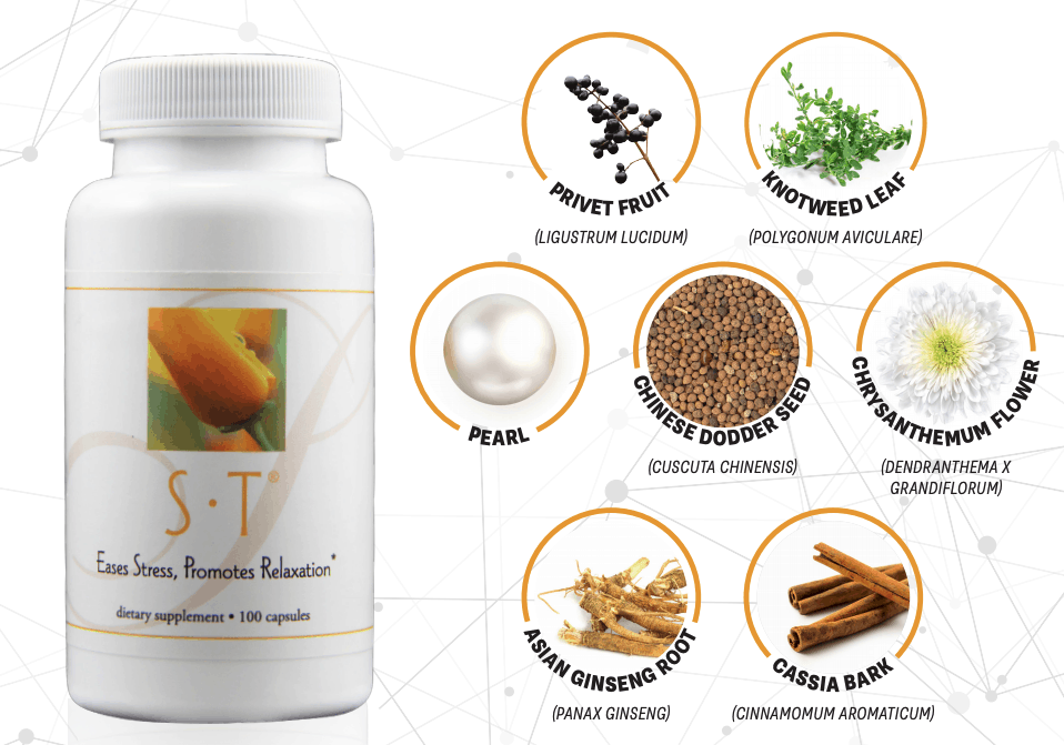 E Excel Nutritional Immunology S.T. relaxation and focus support on Nourish Natural Wellness