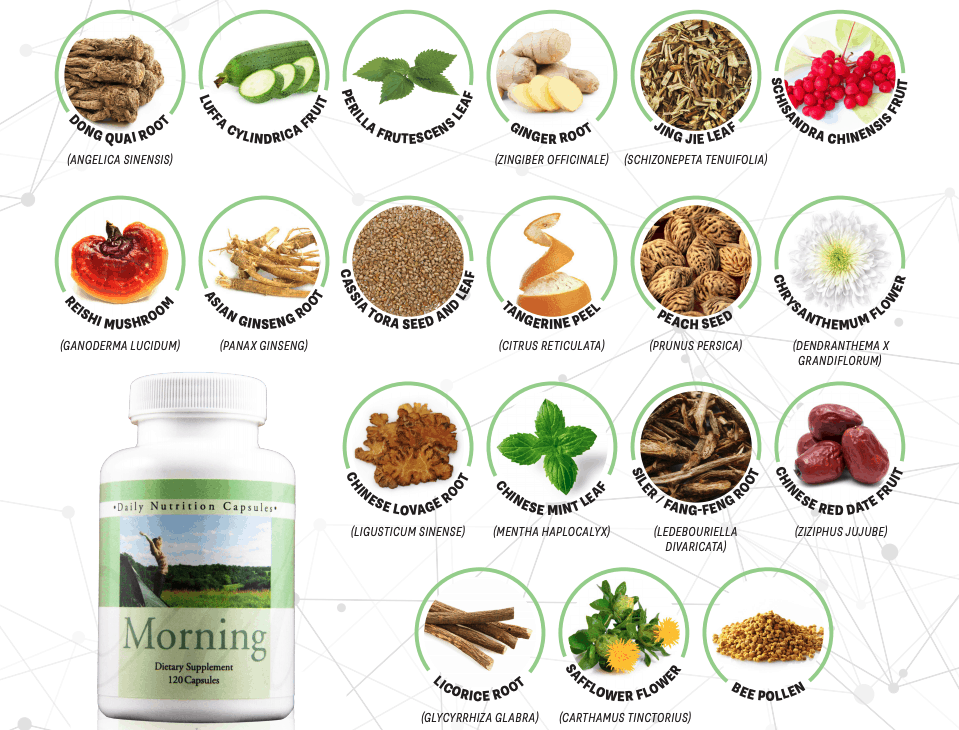 E Excel Nutritional Immunology DNP Morning overall wellness support on Nourish Natural Wellness