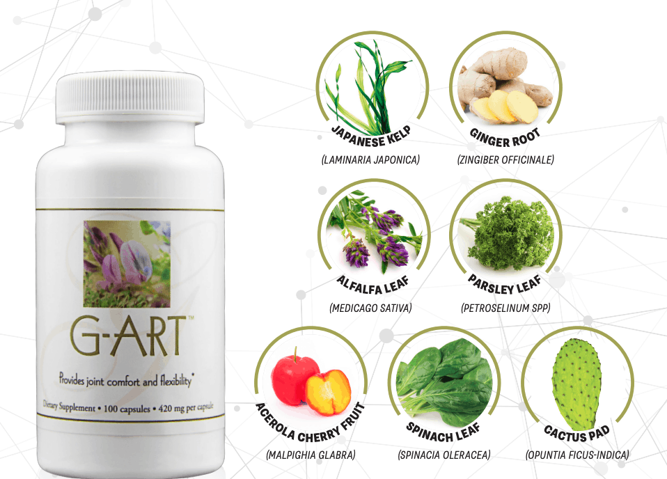 E Excel G-ART healthy motion and flexibility support on Nourish Natural Wellness