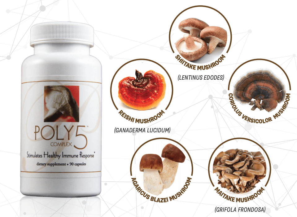 E Excel Nutritional Immunology POLY5 immune response and immune modulation support on Nourish Natural Wellness